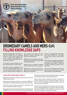 Dromedary camels and MERS-CoV: filling knowledge gap