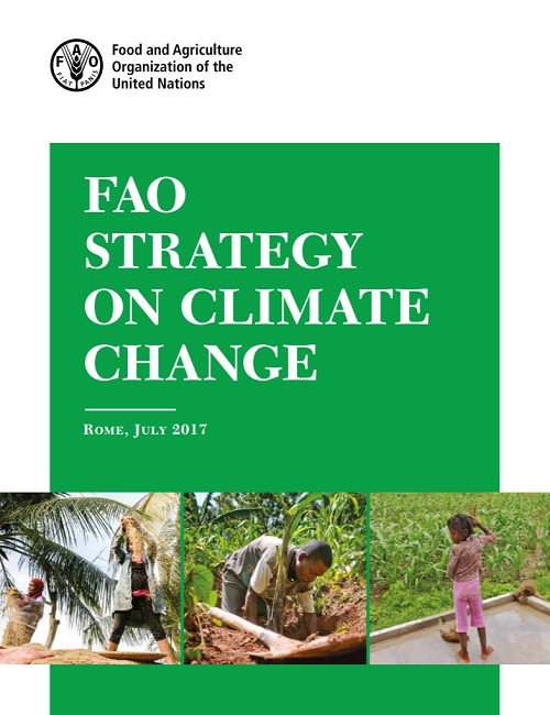 Strategy for FAO's work on climate change