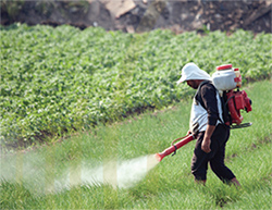 Agriculture: cause and victim of water pollution, but change is