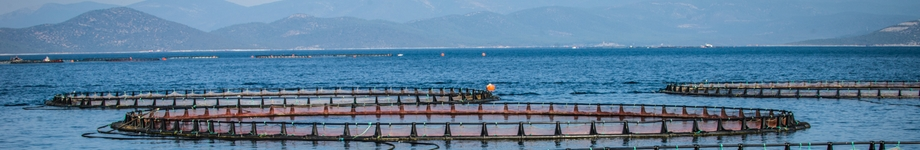 Turkey off shore cages - © C. Amico FAO-GFCM