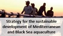 Aquaculture strategy