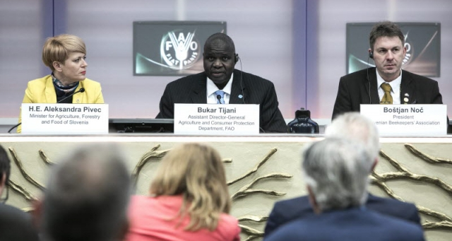 FAO's Global Action on Pollination Services for Sustainable