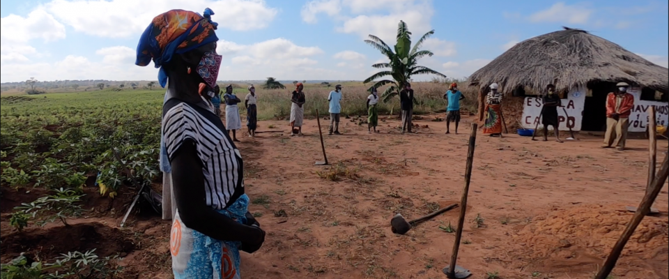 Stopping COVID-19 from reaching family farmers in Angola through farmer field schools