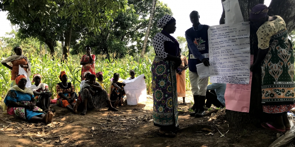 A paradigm shift in Farmer Field Schools methodology in Eastern Africa