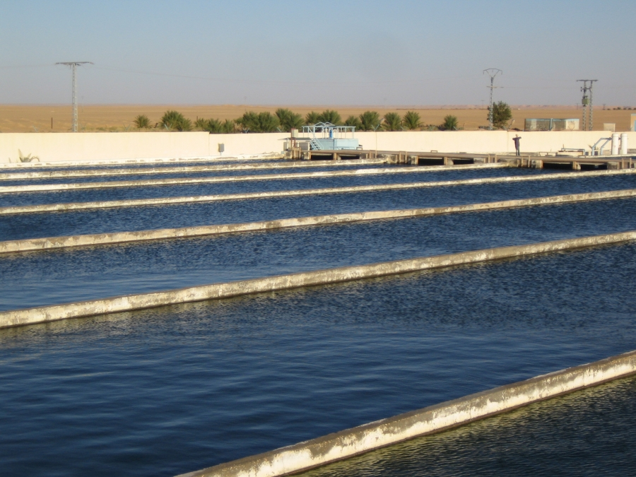 how to start an aquaculture farm