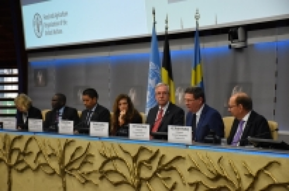 FAO launches new results reports together with Belgium and Sweden