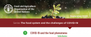 FAO Bulletin n°1 - September - Series The food system and the challenges of COVID-19