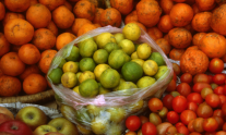 Close up of apples, limes, oranges and tomatoes on sale at a local market in Nepal. ©FAO/Giampiero Diana / FAO
