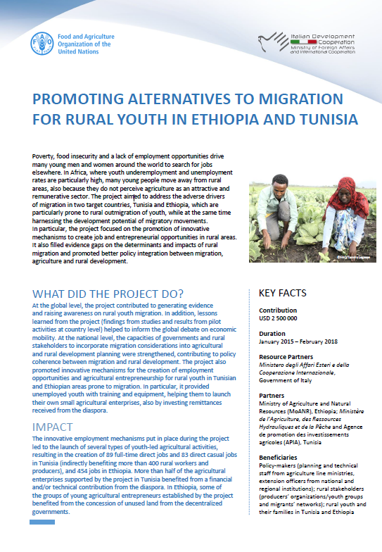 Promoting alternatives to migration for rural youth in
