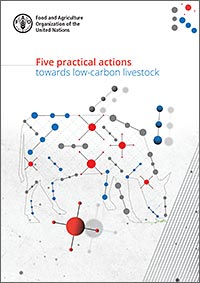 Cover: Five practical actions towards low-carbon livestock