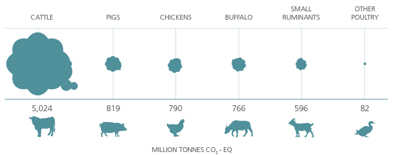 Global emissions estimates by species provide a picture of the link between meat and climate change. Source: FAO.
