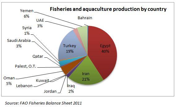 iran comes under which region