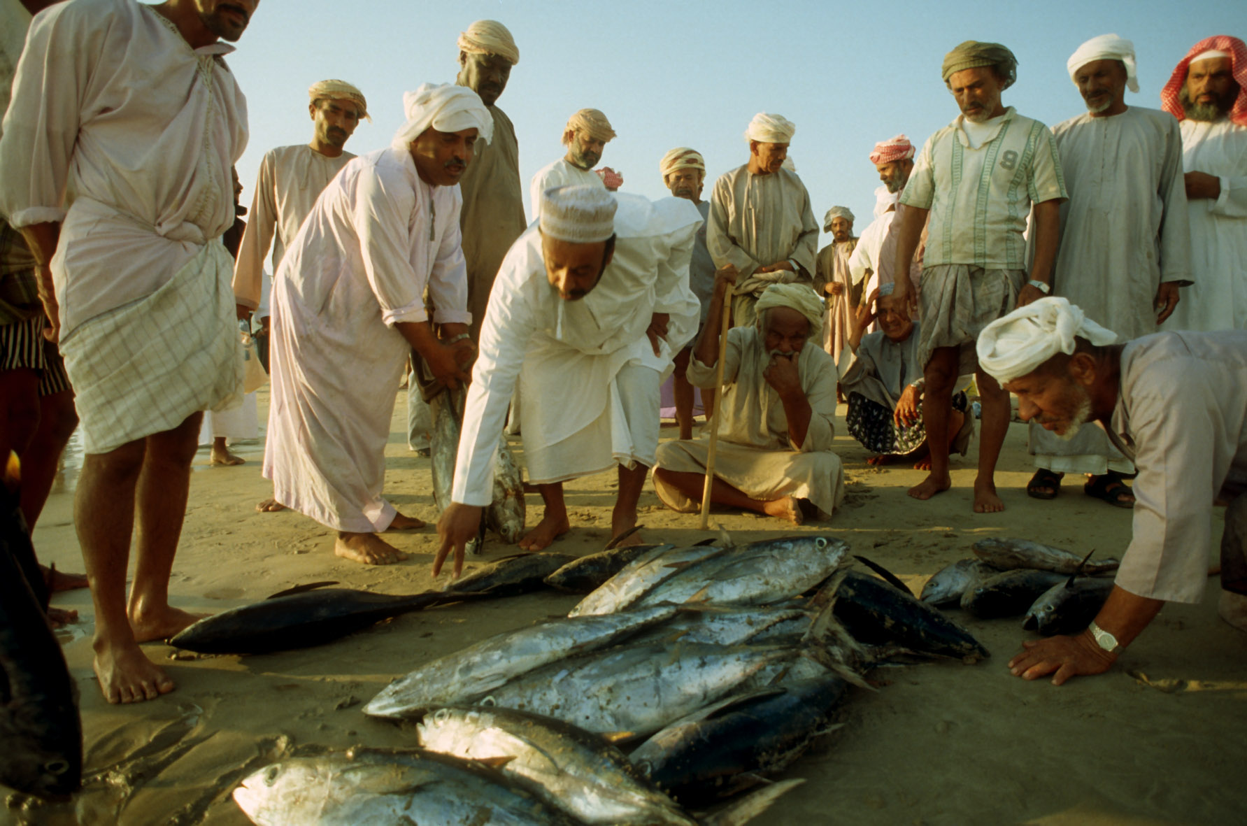 The new investment wave into aquaculture in Middle East