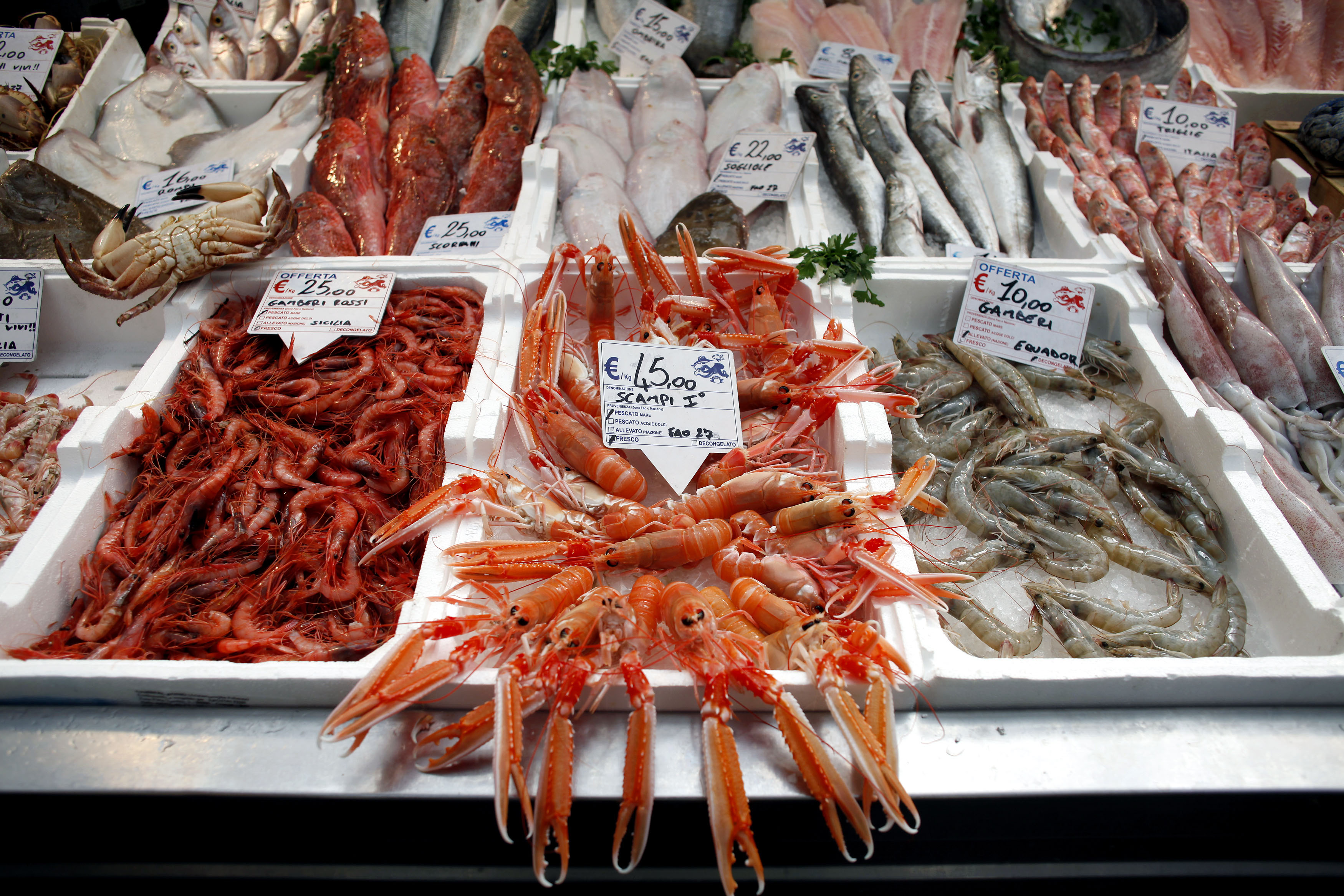 Value of global seafood trade projected to fall by 1 1