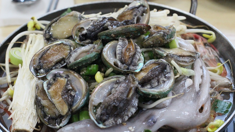 World abalone production at high levels, yet prices remain ...