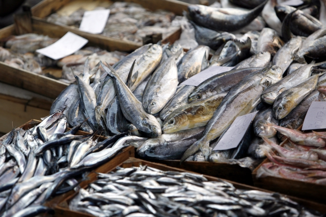 Panel session: How can market measures promote sustainable seafood production and consumption?