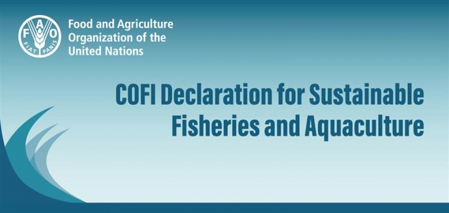 COFI Declaration for Sustainable Fisheries and Aquaculture'
