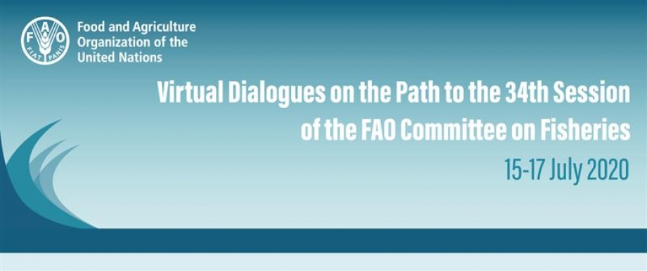 Virtual Dialogues on the Path for COFI 34'