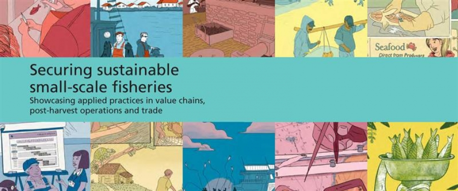 Securing sustainable small-scale fisheries'