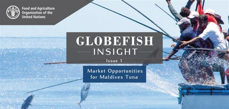GLOBEFISH Insight - Issue 1 - Market Opportunities for Maldives Tuna'