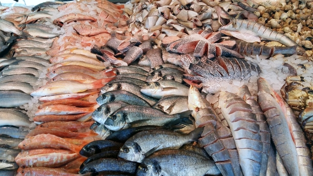 Positive outlook for global seafood as demand surges for multiple species in markets across the world'