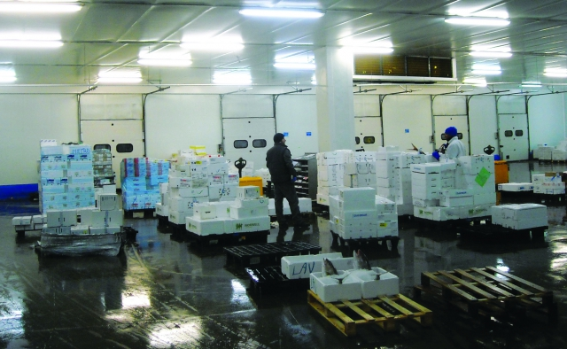 Veterinary controls in international fish trade'