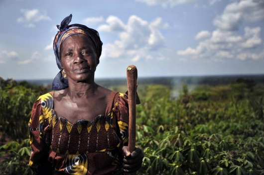 Foto: FAO