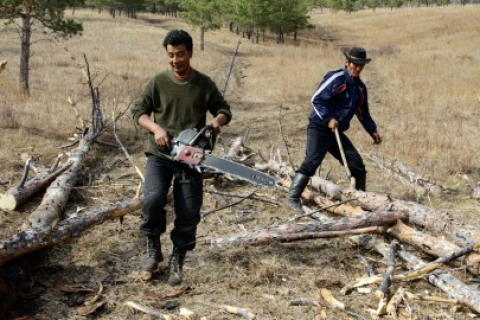 6th International Forest Engineering Conference: Helping field workers cope with the heat