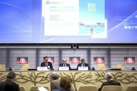 Launch of the FAO-IFPRI Global Food Policy Report 2018