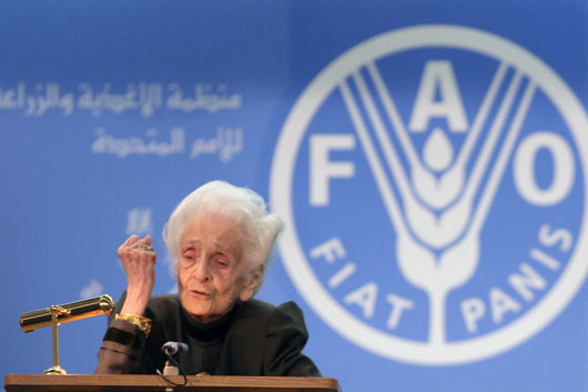 Photo: ©FAO/Giulio Napolitano.