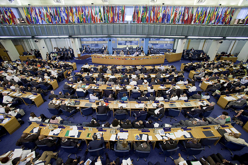 News Article: Election Of The Next FAO Director-General
