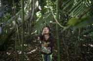 FAO -مقالات إخبارية:تراجع الأسعار الدولية سيخفف من عبء الواردات الغذائية على الدول الأكثر فقراً