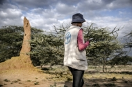 FAO calls on the Committee on World Food Security to focus on innovation & digital solutions, as well as food loss & waste | FAO News