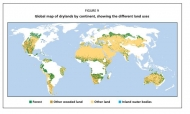 FAO: Trees, forests and land use in drylands: The first global assessment