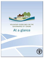 http://www.fao.org/fileadmin/user_upload/nr/land_tenure/newsletter/images/book2.png