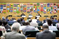 La sociedad civil y el sector privado participan en una reunión informal sobre la Segunda Conferencia Internacional sobre Nutrición (CIN2)