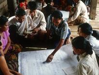 El Consejo de la FAO aprueba las estrategias de colaboración con la sociedad civil y el sector privado