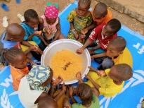 Programme PAA Afrique
