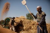 Échos sur l'avenir de l'agriculture