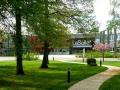 La FAO et l'Université