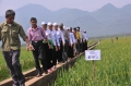 FAO and civil society strengthen partnerships in Asia-Pacific