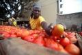 Una mejor nutrición pasa por transformar los sistemas alimentarios