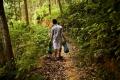 IKEA Suecia y la FAO trabajarán unidos en gestión forestal sostenible