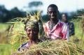Un cours d'apprentissage numérique place l'égalité des genres au cœur de la planification agricole