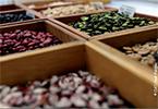 Sistema de semillas