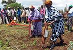 Mécanisation agricole durable