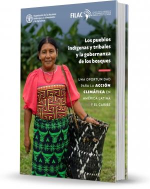 """relatório """"Povos indígenas e comunidades tradicionais e a governança florestal"""""""