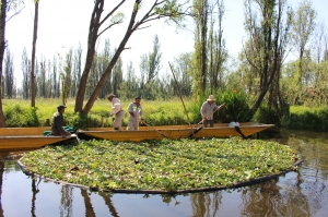Chinampas Of Mexico City Were Recognized As An Agricultural Heritage System Of Global Importance Fao