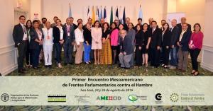 Los Frentes Parlamentarios contra el Hambre surgen en el año 2009, como una respuesta a la necesidad de construir marcos legislativos adecuados para la erradicación del hambre en la región