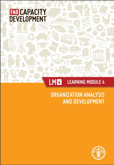 Fao Capacity Development Organization Analysis And Development